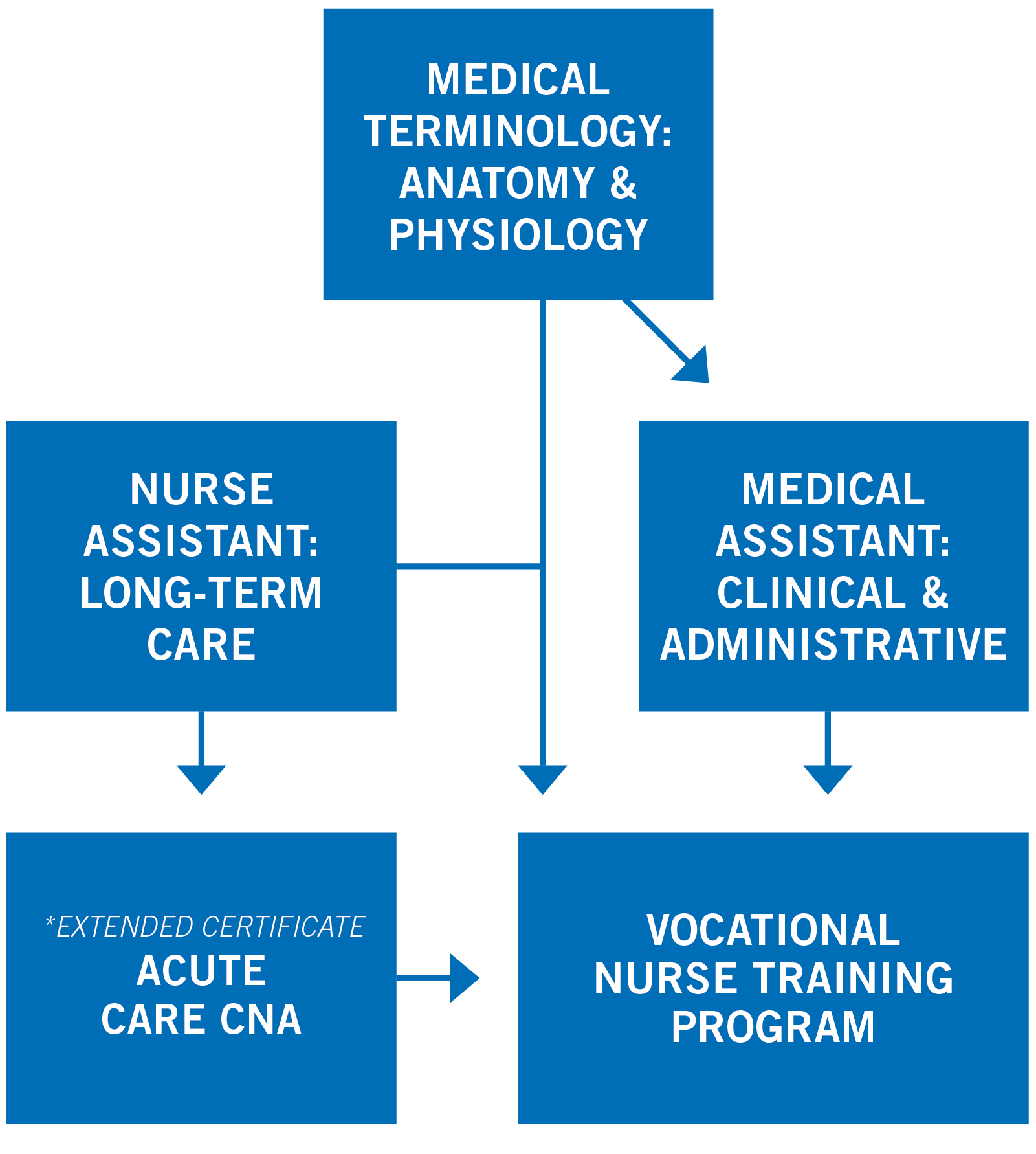 Vocational Nurse Training Pathway Map